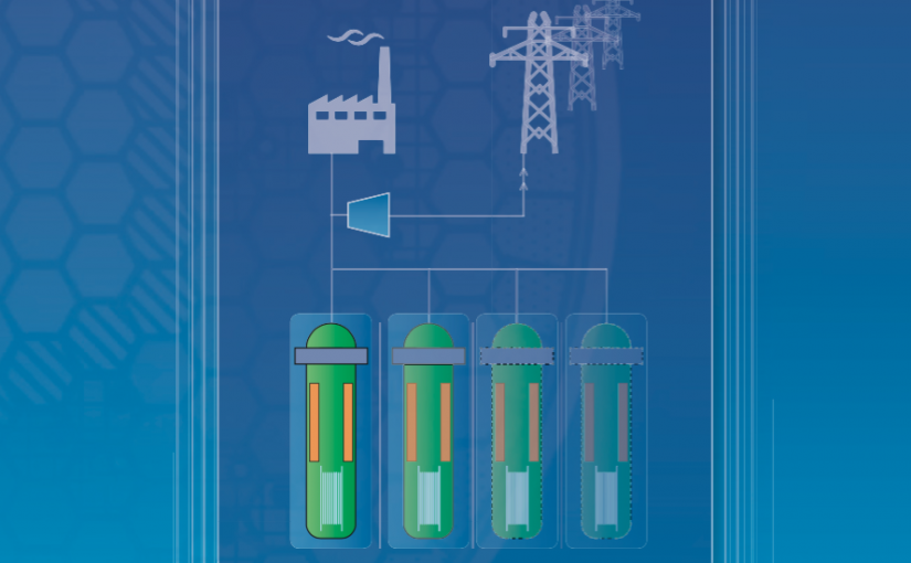 Advances in Small Modular Reactor Technology Developments